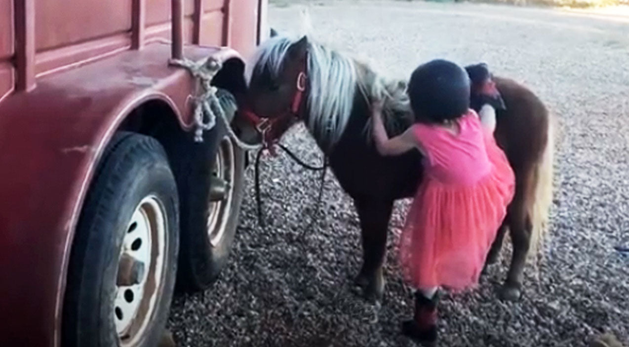 Unstoppable Little Cowgirl Hysterically Struggles To Mount Her Pony | Country Music Videos