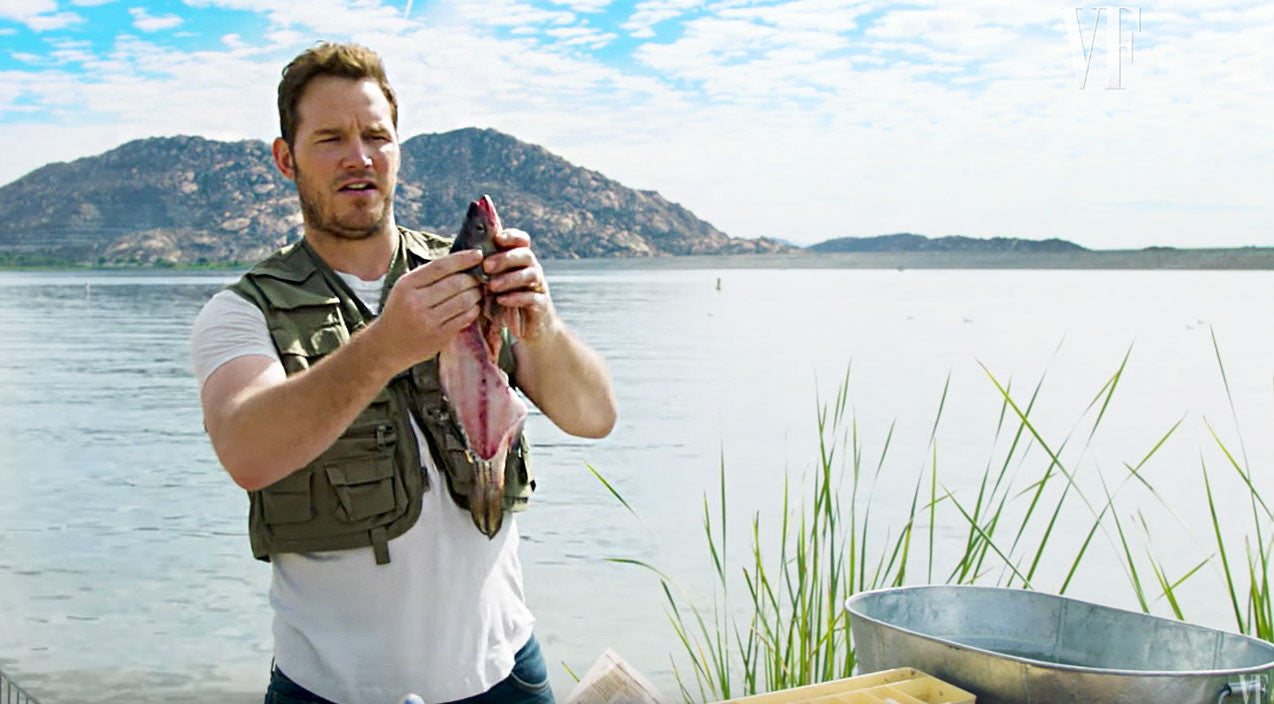 Viral content Songs | Chris Pratt Gives Hysterical Lesson On How To Gut A Fish | Country Music Videos