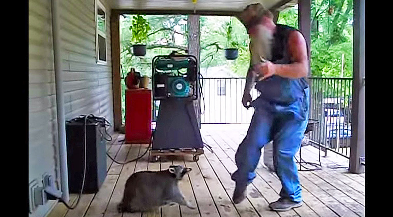 This Country Man Starts Dancing, But When The Raccoon Joins In? Hysterical! | Country Music Videos