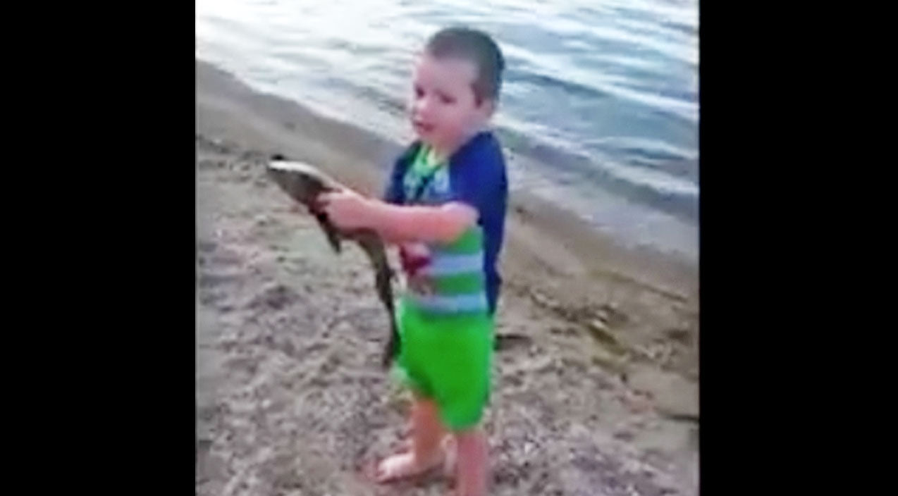 Viral content Songs | Little Boy Catches Fish And You Won't Believe Your Eyes | Country Music Videos