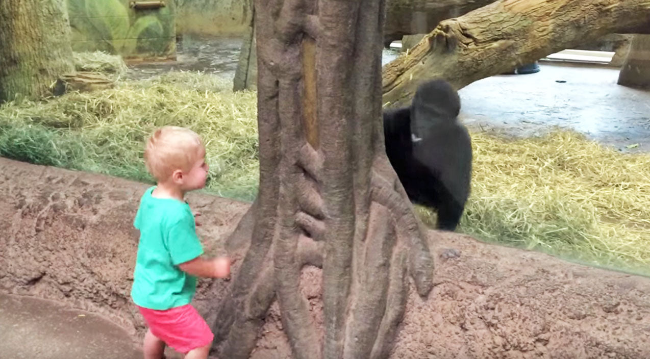Cute kids Songs | Baby Boy & Baby Gorilla Playing Peek-A-Boo Is The Cutest Thing Y'all Will See Today! | Country Music Videos