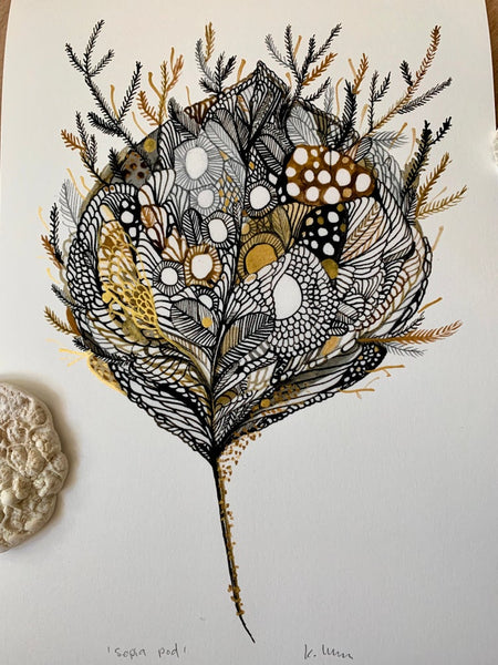'Sepia pod' giclee print with hand applied gold ink details