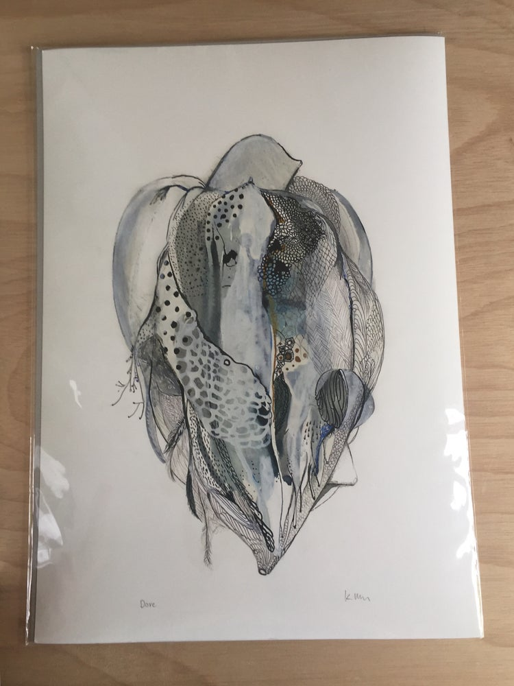 'Dove' fine art print, A3 or A4