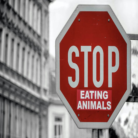 Fair Trade | Global Warming | Climate Change | Stop Eating Animals
