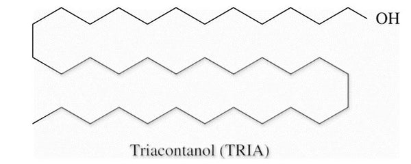 Triacontanol and its effects in plants