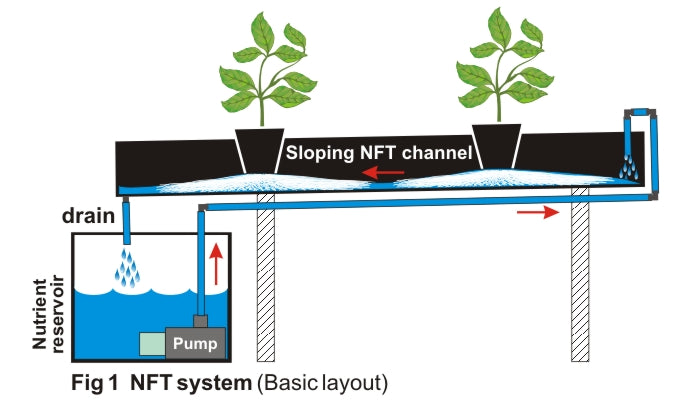 Recirculating NFT system