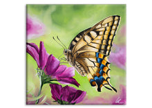 Load image into Gallery viewer, Swallowtail Butterfly (Print)