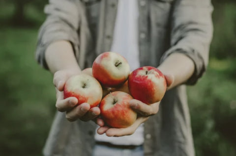 Man holding a bunch of apples