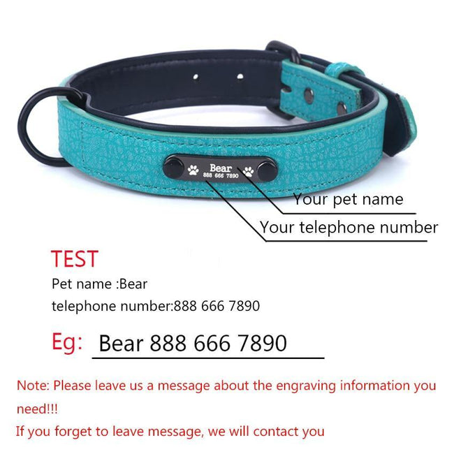 Personalized Adjustable Dog Collars - ExponentStore