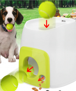 Ball Launching Automatic Dog Toy - ExponentStore