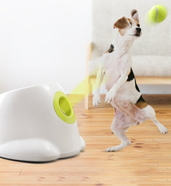 Ball Launching Automatic Dog Toy
