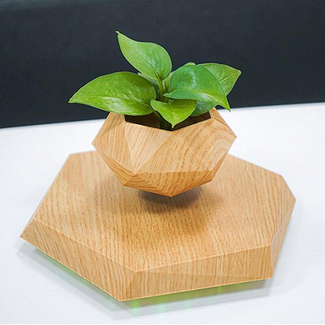 Wood Grain Floating Plant Pot - ExponentStore
