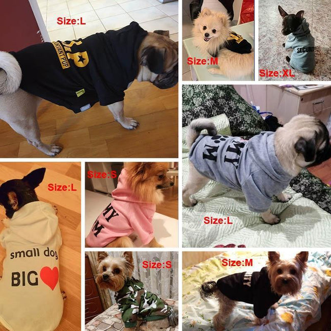 Funny Text Dog Clothes - ExponentStore