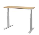 upCentric 2LV Electric Height Adjustable Table