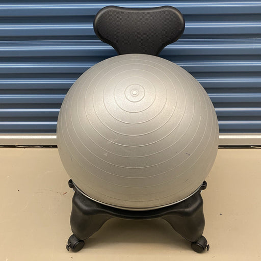 Shop Lendy - Balance Ball Chair - Shop Lendy