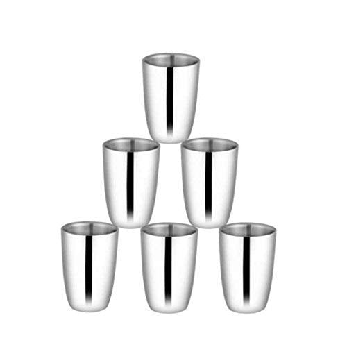 Shri & Sam High Grade Stainless Steel Nikki Glass Set Double Wall, Silver, Pack of 6