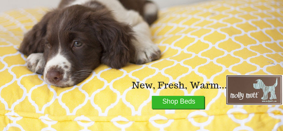 Dog Bed Duvets Molly Mutt Wholesale Prices