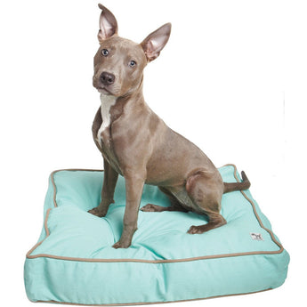 Nightswimming Dog Bed Duvet - Rocco's Pets  - Dog Bed - Molly Mutt  - 1