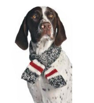 Organic Wool Knit Dog Scarf - Boyfriend Scarf - Rocco's Pets  - Scarves - Rocco's Pets  - 1