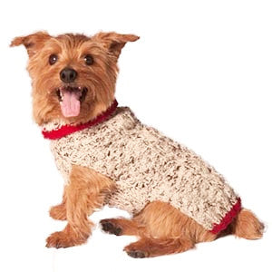Handmade Oatmeal and Red Cable Knit Organic Wool Dog Sweater - Rocco's Pets  - Sweater - Rocco's Pets