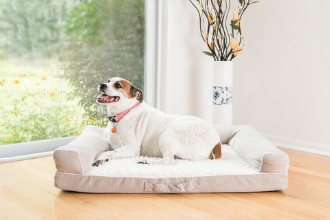 Armarkat Orthopedic Pet Bed Beige