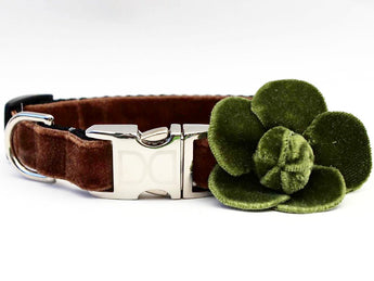 Camellia Olive Rose Adjustable Velvet Dog Collar - Rocco's Pets  - Collars - Diva Dog