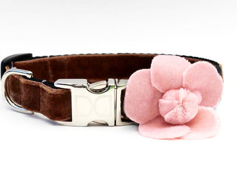 Camellia Soft Pink Rose Adjustable Velvet Dog Collar - Rocco's Pets  - Collars - Diva Dog Teacup - 1