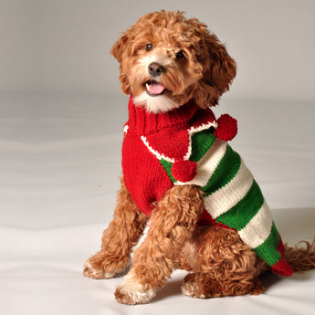 Handmade Christmas Elf Organic Wool Dog Sweater - Rocco's Pets  - Sweater - Rocco's Pets