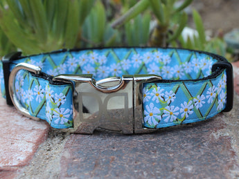 Daisy Adjustable Ribbon Dog Collar