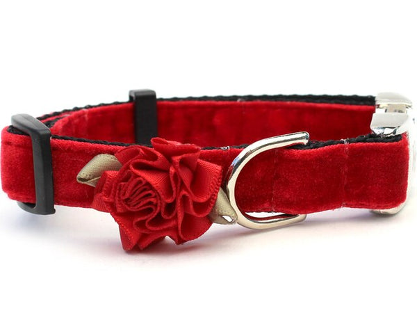 Holiday Mistletoe Red Velvet Dog Collar