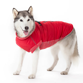 Dogo Pet Runner Coat Warm Insulated Red