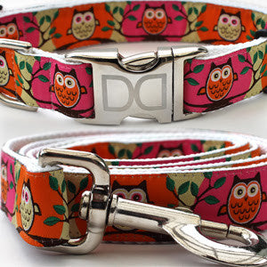 H'Owl Halloween Adjustable Nylon Dog Collar - Rocco's Pets  - Collars - Diva Dog Teacup / Orange - 3