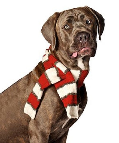Organic Wool Knit Dog Scarf - Stripes Red/White