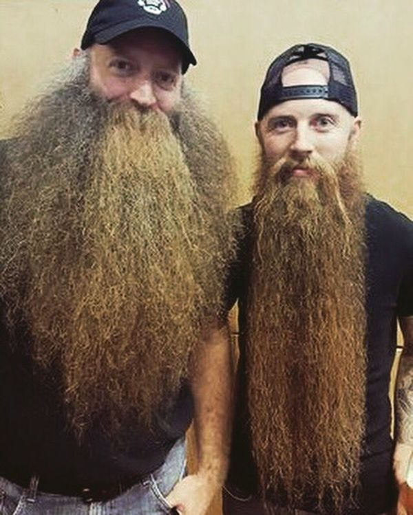 style barbe sauvage zz top
