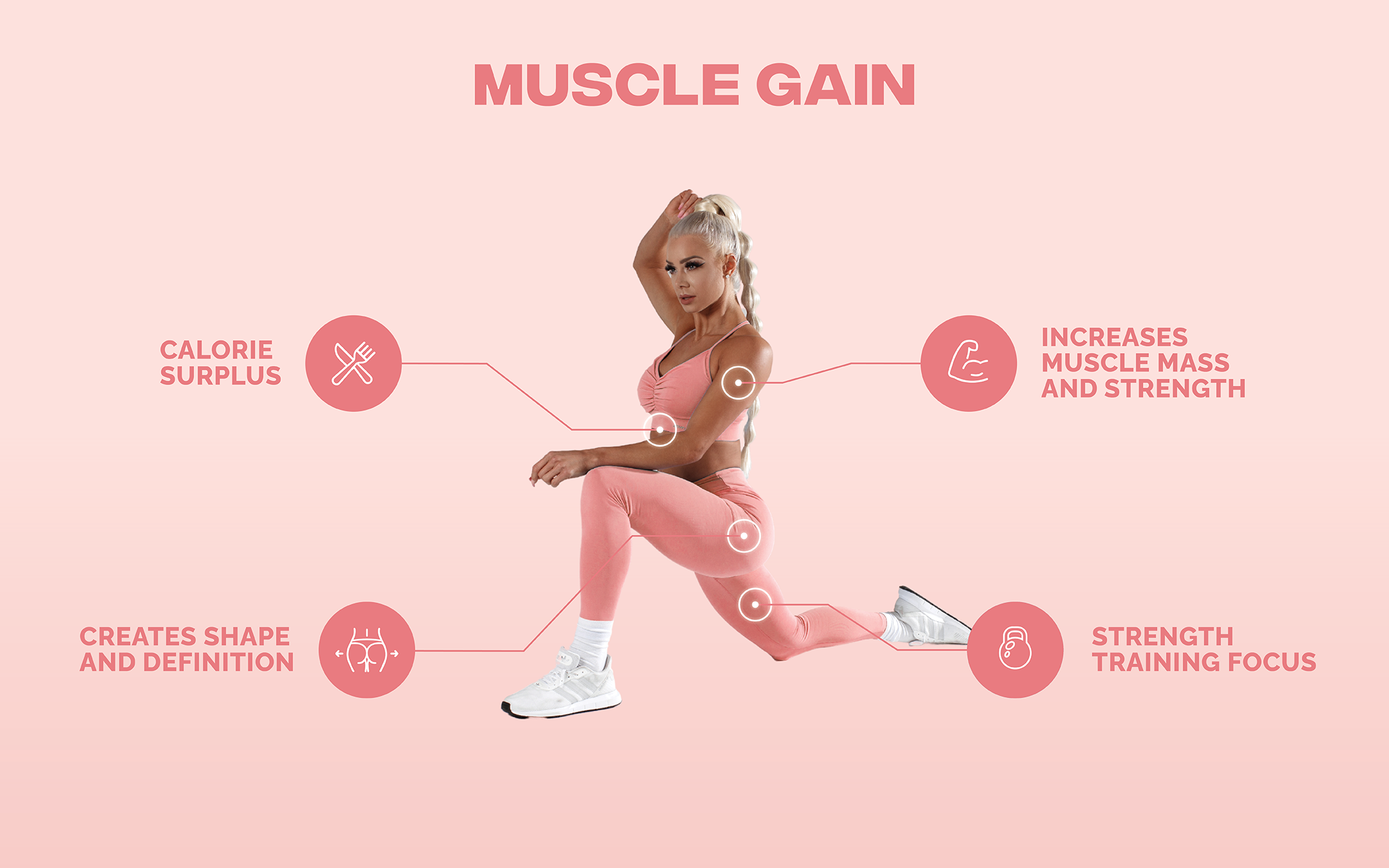 Muscle Gain Infographic
