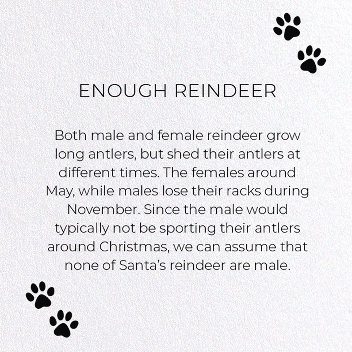 ENOUGH REINDEER
