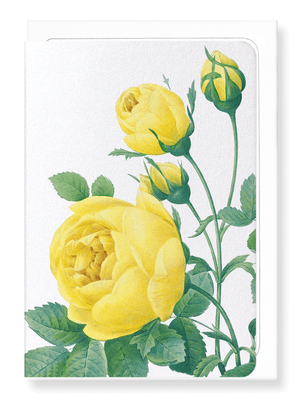 Ezen Designs - Yellow roses (detail) - Greeting Card - Front