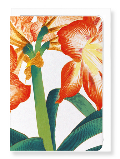 Ezen Designs - BIRDS OF PARADISE - Greeting Card - Front