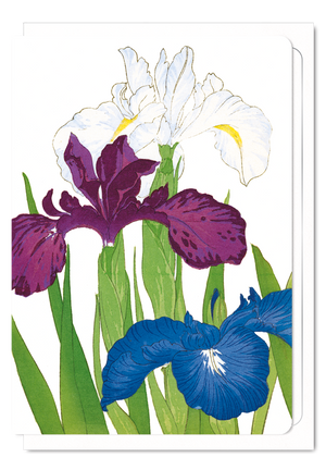 Ezen Designs - Iris - Greeting card - Front