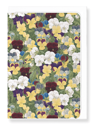 Ezen Designs - Pansies - Greeting card - Front