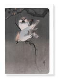 Ezen Designs - Waxwing birds - Greeting card - Front