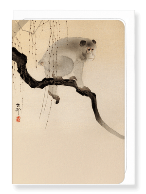Ezen Designs - Monkey in a tree - Greeting Card - Front