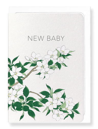 Ezen Designs - New baby apple blossoms - Greeting Card - Front