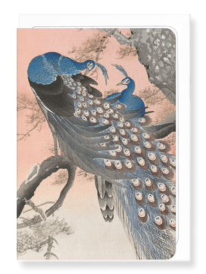 Ezen Designs - Couple of peacocks  - Greeting card - Front