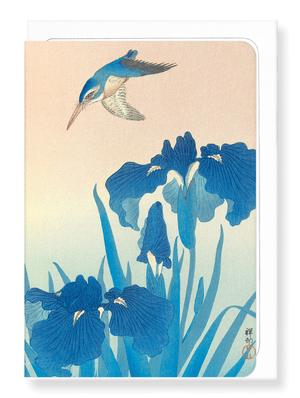 Kingfisher and Iris