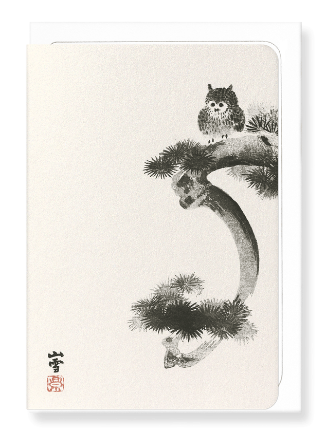 Ezen Designs - Owl on pine tree - Greeting Card - Front