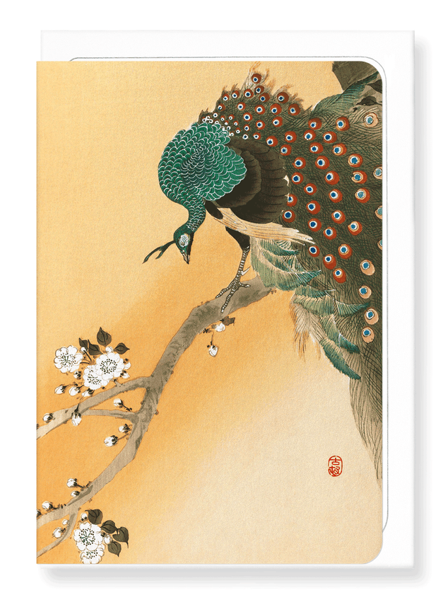 Ezen Designs - Peacock on cherry blossoms - Greeting Card - Front