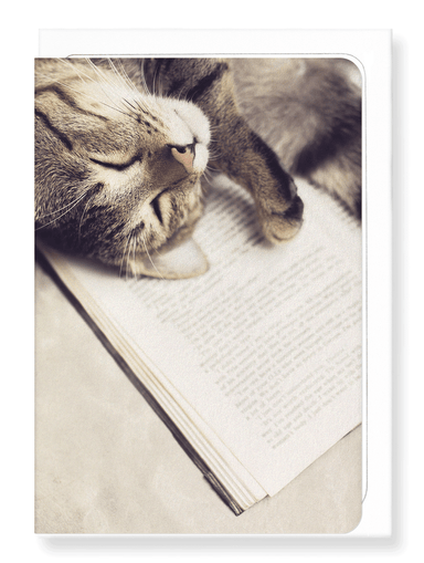 Ezen Designs - Cat and book - Greeting Card - Front