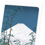 Mount fuji in hakone