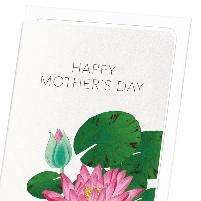 Mother's day waterlily